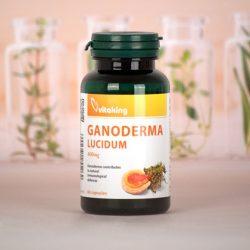 Vitaking Ganoderma kivonat