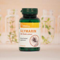 Vitaking Silymarin – máriatövis mag (30)