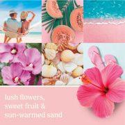 Yankee Candle Pink-Sands Tarts mini viasz