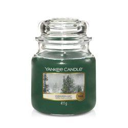 Yankee Candle Evergreen Mist közepes üveggyertya