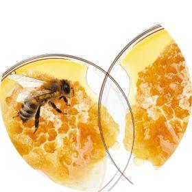 BIO méhpempő