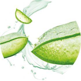 Bio Aloe Vera