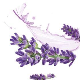 BIO Levendula